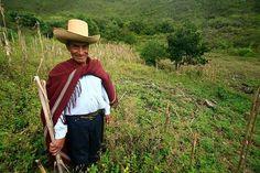 Acabo de compartir la foto de Edgar Asencios Miranda que representa a: Chumbicate