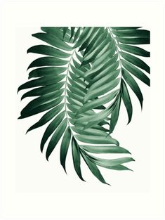 """Letter Discover Palm Leaves Tropical Green Vibes Art Print by anitabellajantz """"Palm Leaves Tropical Green Vibes """" Art Prints by anitabellajantz Tropical House Design, Tropical Home Decor, Tropical Interior, Tropical Colors, Tropical Houses, Tropical Leaves, Tropical Plants, Tropical Art, Tropical Vibes"""