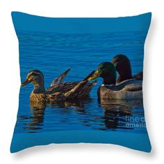 Mallards Throw Pillow featuring the photograph Three's Company by Scott Hervieux