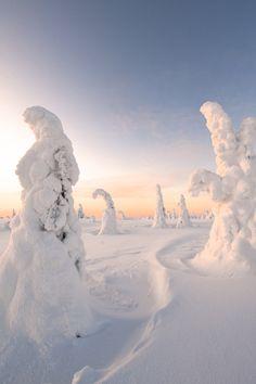 "pearlkillers: ""Riisitunturi, Finlandwebsite | travel blog | instagram """