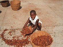 Most chocolate comes from child labor and/or slavery...reflect on this before indulging...