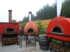 Some of the ovens at our Healdsburg cooking school where students get hands-on practice in making amazing wood fired menus.