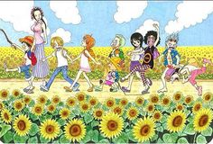 One Piece, Straw Hat Pirates, Makino