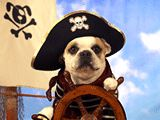 """'Tis a fine day at sea, me matey, RECIPIENT -- Ship shape and the skies be clear. We're celebratin' OCCASION Heave ho, ye buccaneer! So raise your mug of BEVERAGE, Before it's too late, me hearty. SENDER would like to say, """"Come on, let's have a party!"""" RECIPIENT"""