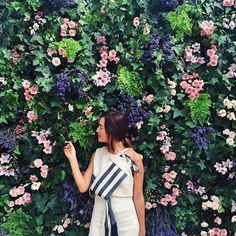 Beautiful blooms welcoming us at the @louisvuitton Garden Party today - See more at: http://iconosquare.com/viewer.php#/detail/1022755518641570144_6913295