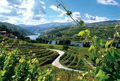 Délicieuse vallée du Douro | Métro