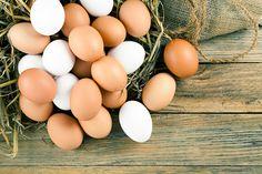 Das Ei als Nahrungsmittel hat eine lange Tradition. Beim Kochen und Backen lassen sich Eier jedoch ersetzen. Wir haben die 10 besten veganen Alternativen.