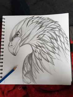 Meilleur 11 Oui ou non ? ❤️ 😍 👏 Coment et vous taguer . Pencil Drawings Of Animals, Dark Art Drawings, Art Drawings Sketches Simple, Animal Sketches, Bird Drawings, Cool Drawings, Simple Pencil Drawings, Tattoo Sketches, Tattoo Drawings