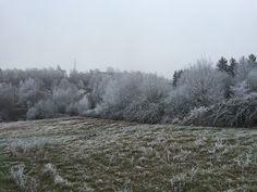 Laufend gebloggt: Eisiges Weilerbachtal