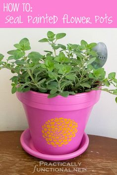 How To Seal Painted Flower Pots || Practically Functional