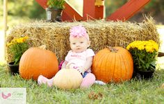 tonya lowman photography, fall photography