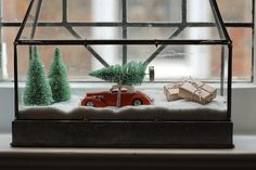 Could clean out my unused terrarium for a display case!! --- Rambling Renovators: A Wee Christmas Display