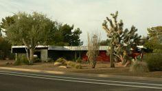 MCM Desert Landscape