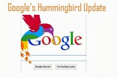 Google Hummingbird and SEO: What You Need to Know