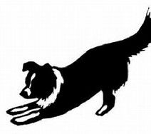 border collie logo google search podnik pinterest logo rh pinterest com border collie dog clipart
