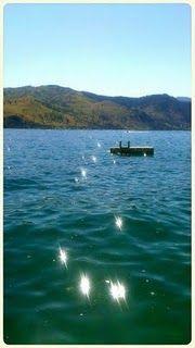 The lake>>