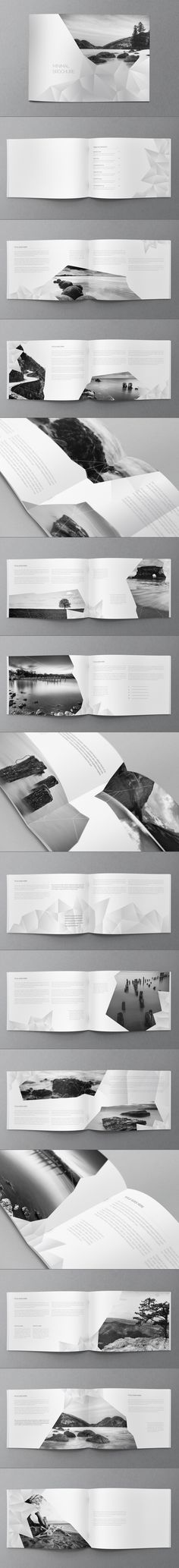 White Minimal Brochure. Download here: http://graphicriver.net/item/white-minimal-brochure/8285896?ref=abradesign #design #brochure