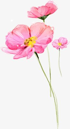This site presents a complete wallpaper Lia images, presented to you seekers of information about wallpapers images. Watercolor Pencil Art, Watercolor Flowers Tutorial, Watercolor Cards, Watercolor Illustration, Floral Watercolor, Watercolor Paintings, Flower Clipart Png, Flower Vector Art, Vector Flowers