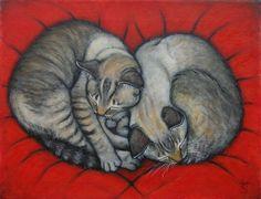 sleeping cats - by Heidi Shaulis