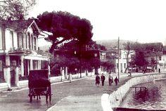 Pendik 1950