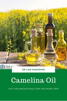 Relatively unheard of, camelina oil is great for cooking, tastes wonderful, and packs vital nutrients that can help reduce inflammation and much more. Adrenal Health, Adrenal Fatigue, Health And Wellness, Health Fitness, Chronic Stress, Dealing With Stress, New Cooking, Anti Inflammatory Diet, Healthy Oils