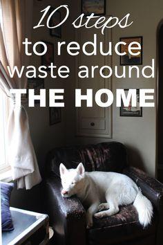 10 Zero Waste Tips f