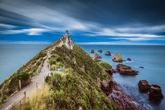Nugget Point, South Island, New Zealand - The most photogenic nuggets I have ever seen in my life! At the bottom of the South Island ~