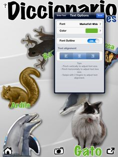 How to create a Visual Dictionary using the FREE iPad app Pic Collage