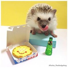 """Ahhh, pizza night for dinner. Fantastic way to end the day."" 