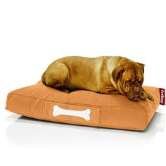Fatboy Doggielounge Stonewashed large - orange