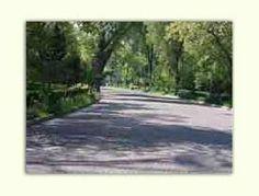 Dirección de Reforestación Urbana, Parques y Ciclovías