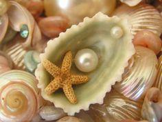 vintage seashell jewelry
