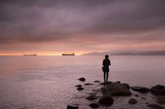 любимый фотограф интроверта - Поиск в Google