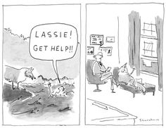"""Get help!"""" - New Yorker Cartoon by Danny Shanahan. Themes of animals, help, and, oh yeh, water."""