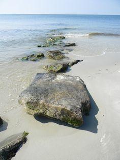 Cape Cod... Image by Krista Baglioni