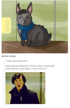 Proof that Benedict is at least part rabbit (gif)