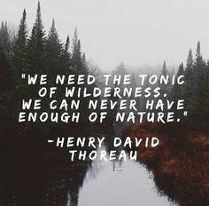 """We need the tonic of wilderness. We can never have enough of nature"" - Henry David Thoreau"