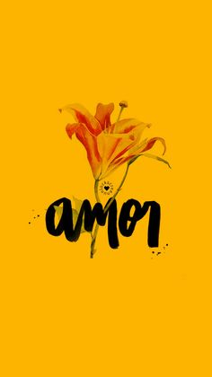 AMOR. - lettering lovers, can you feel it? :)