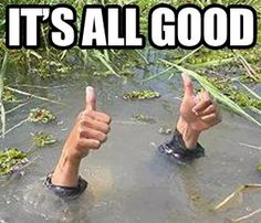 Image result for thumbs up funny