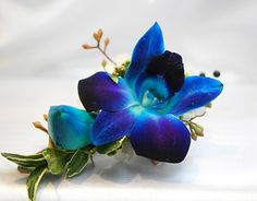 Bright Blue dendrobium orchid boutonieer