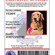 Our is a personalized identification card for your service and therapy dog, customized with you and the information about your dog. Electrical Inspection, Dog Information, Dog Id, Therapy Dogs, Dog Memes, Service Dogs, German Shepherd Dogs, Dog Accessories, Dog Photos