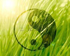 Yin Yang Background Stock Photos Images, Royalty Free Yin Yang Background Images…