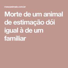 Morte de um animal de estimação dói igual à de um familiar