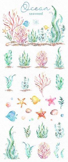 Underwater watercolor clip art of aquatic plants – Unterwasserfahrzeug carl – Aquarium Painting & Drawing, Watercolour Painting, Ocean Drawing, Plants Watercolor, Underwater Drawing, Watercolor Water, Tattoo Watercolor, Aquarium Drawing, Starfish Drawing