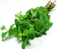 Peppermint essential oil has naturally-occurring antispasmodic properties. It is effective for treating a wide range of digestive complaints, such as easing irritable bowel syndrome, cramping or stomach spasms and pain. According to Martin, peppermint oil has a antispasmodic effect on smooth muscle, so it is also useful at treating bronchial spasms and coughing. You can also use peppermint oil to relieve nausea and congestion.