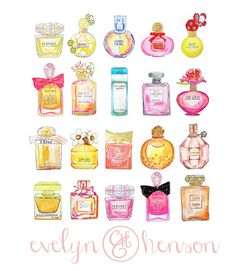 The Perfume Collection Print 12 x 12 by EvelynHenson on Etsy, $65.00 ........................................ Cute idea to hang a hand drawn picture of your favorite perfume!