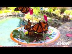 How to Make a Homemade Butterfly Feeder. Besides bringing a magical beauty to any garden, butterflies help promote growth by pollinating flowers. You can attract more butterflies to your yard with these DIY butterfly feeders – one made with a plate and one made with a jar – that also serve as attractive garden ornaments. Mother Nature...