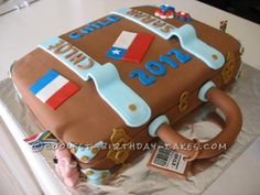 Suitcase Cake for a Farewell... This website is the Pinterest of birthday cake ideas #voteforthiscakebyJackiSands