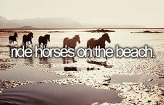 Before I die, I want to... Ride Horses on the beach... I look like a loon when I ride, but I love doing it so I don't care!
