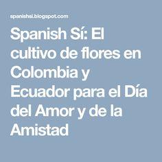 Spanish Sí: El cultivo de flores en Colombia y Ecuador para el Día del Amor y de la Amistad